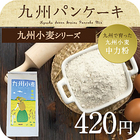 九州小麦 中力粉 チクゴイズミ