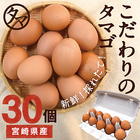 【送料無料】宮崎産タマゴ30個 九州育ちのこだわりたまご 南九州の大自然の中、こだわりの飼料と水で育てた濃厚な味わいの栄養豊富なタマゴ 品質・衛生管理された安心・安全な高品質たまごをお届けします!【生卵/タマゴ/たまご】