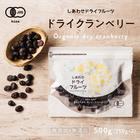 【送料無料】ドライクランベリー500g(250g×2)有機栽培のクランベリーを使用。ポリフェノールが豊富で健康と美容に嬉しい栄養たっぷり