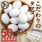 【送料無料】九州育ちの絶品たまご こだわり新鮮なとろ~りたまご 品質・衛生すべてHACCP管理された安心・安全なたまご ビタミンEは一般卵のなんと10倍の美味しく栄養もたっぷり♪ 50玉【生卵/タマゴ/たまご】