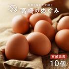 宮崎産タマゴ10個 九州育ちのこだわりたまご こだわりの飼料とマイナスイオン水で育てた濃厚な味わいのタマゴ 品質・衛生管理された安心・安全な高品質たまご【生卵/タマゴ/たまご】
