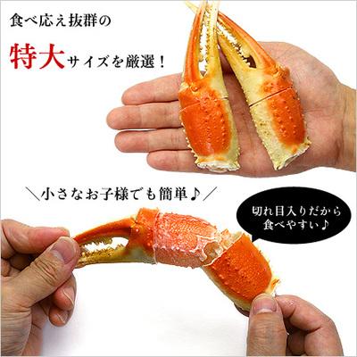 切れ目入り特大ボイルずわいがに爪1kg(解凍後800g)16~20個入り[送料無料]【蟹爪】【カニ爪】【かに爪】【かにつめ】【カニツメ】