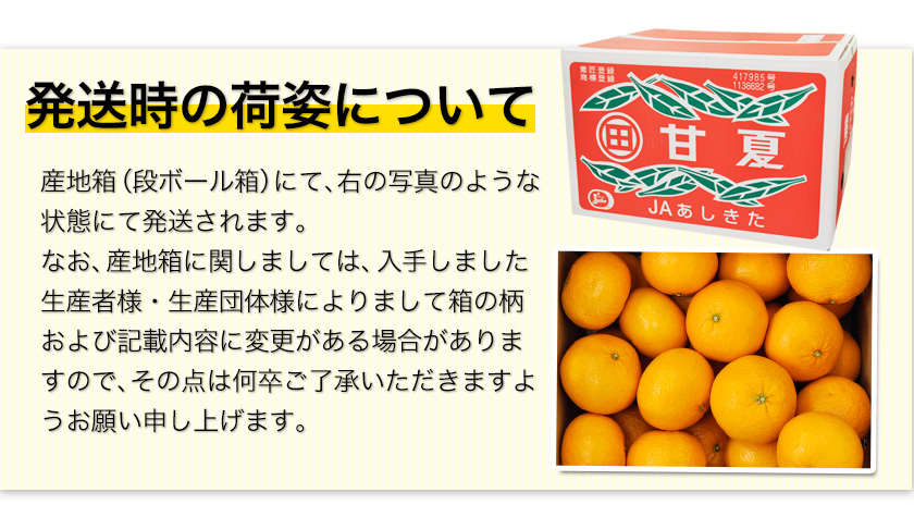 秀品 甘夏 みかん 約10kg / 3L~Mサイズ 送料無料 柑橘 の 名産地 熊本産 限定 旬 の みかん 《3月末-4月中旬頃より順次出荷予定》【W】