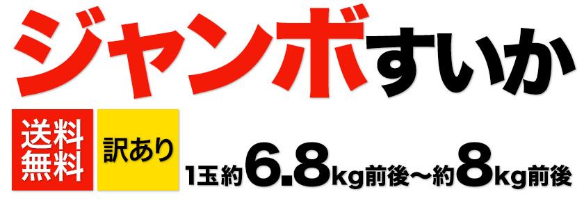 すいか 本場 熊本県産 訳あり ジャンボ スイカ 1玉 【送料無料】(約6.8kg前後-約8kg前後)《6月中旬-7月上旬頃発送予定》【W】