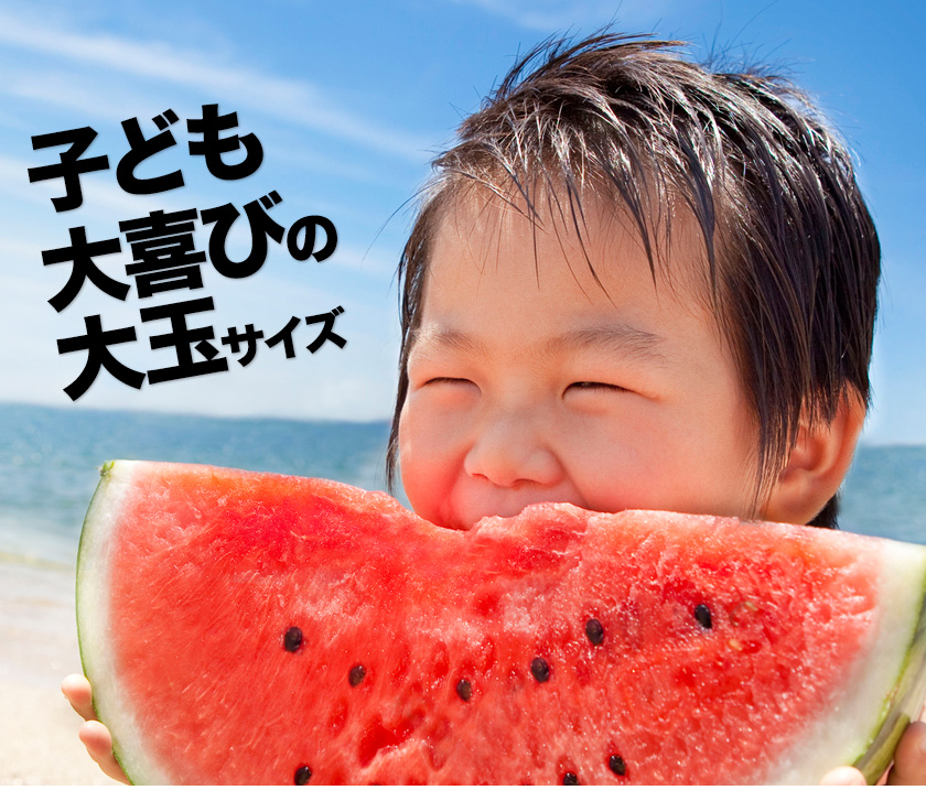 【送料無料】【訳あり品】スイカ日本一の産地・熊本産ジャンボすいか1玉(約6.8kg前後-約8kg前後)!甘くてみずみずしい♪《8月中旬-9月上旬頃より順次出荷》【W】
