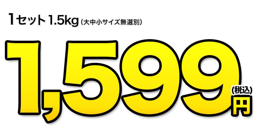 にんじん 1.5kg クール便 送料無料 熊本県産 訳あり 家庭用 料理 ジュース 2セット購入で1セット分おまけ増量 3セット購入で3セット分おまけ増量 《7-14営業日以内に出荷(土日祝除く)》【W】