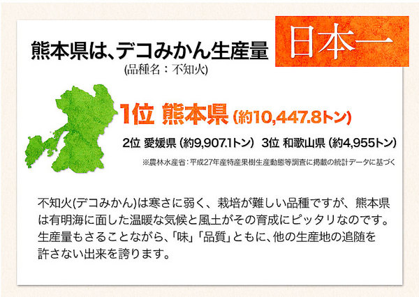 デコみかん 約4kg 10~22玉 送料無料 本場 熊本県産 不知火 旬 の みかん《《3-7営業日以内に出荷予定(土日祝日除く)》》【W】|