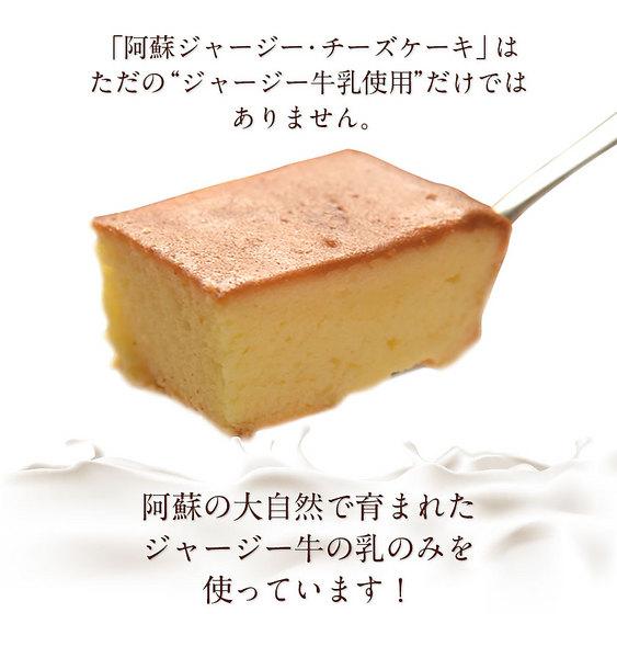 阿蘇 ジャージー チーズケーキ 1個 希少 な ジャージー牛乳使用 送料無料 スイーツ《3-7営業日以内に出荷予定(土日祝日除く)》【W】|-