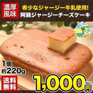 | 阿蘇 ジャージー チーズケーキ 1個 希少 な ジャージー牛乳使用 送料無料 スイーツ《3-7営業日以内に出荷予定(土日祝日除く)》【W】