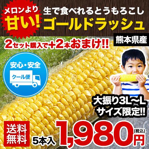 【日本最速級出荷】ゴールドラッシュ 1セット5本入り 【送料無料】【クール便】フルーツコーン 甘い 2セット購入で+2本増量 ※複数セットご購入の場合、1箱におまとめ配送 《6月中旬-6月末頃より順次出荷》【W】