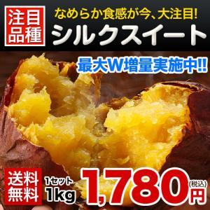 シルクスイート 1kg 送料無料 【訳あり】 熊本県産 さつまいも (サイズ大中小不揃い)【2セットで1セット分★3セットなら+2セット増量】※複数購入の際は1箱におまとめ配送 《1月中旬~2月上旬頃順次出荷》【W】|