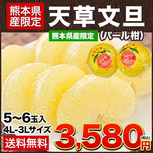 ギフト 天草文旦 (パール柑) 4L-3L/5-6玉入 約3kg前後 送料無料 柑橘の一大産地熊本県産限定贈答 フルーツ 《7-14営業日以内に出荷予定(土日祝日除く)》【W】|