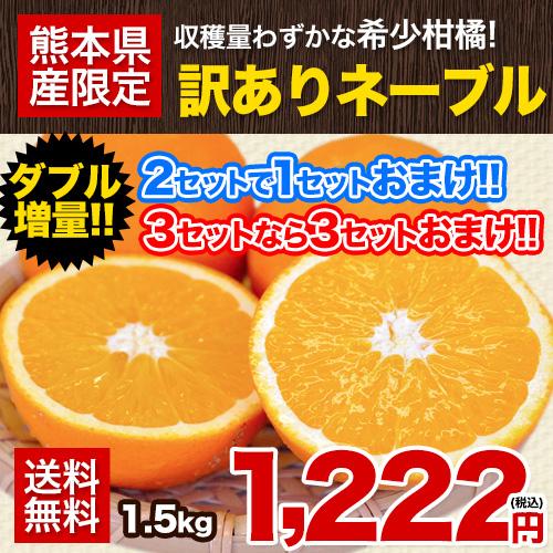 ネーブル オレンジ 1.5kg 送料無料 訳あり 安心安全 熊本県産 旬 の みかん 2セット購入で1セット 3セット購入なら3セット増量 ※複数購入の場合1箱におまとめ配送 《3月下旬-4月中旬頃より順次出荷》【W】