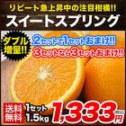 【送料無料】【熊本県産】新種の柑橘!スイートスプリング 1.5kg (3L~Lサイズ/3L-L混合) ※複数購入の場合1箱におまとめ配送《12月中旬-12月末頃より順次出荷》》【W】