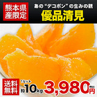 優品 熊本産 清見 約10kg / 3L~Mサイズ 送料無料 柑橘 の 名産地 熊本産 限定 旬 の みかん 贈答 ギフト 《7-14営業日以内に出荷予定(土日祝日除く)》【W】|