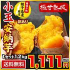 長期熟成 小玉限定 本場種子島産 訳あり 安納芋 1.2kg 小玉 2S~3Sサイズ限定 【送料無料】 さつまいも 《3-7営業日以内に出荷予定(土日祝日除く)》【W】