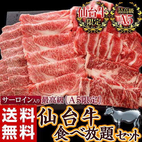 \数量限定!/サーロイン入り!最高級「A5」の黒毛和牛(仙台牛)特選セット 4種 総重量1キロ※冷凍203z05608