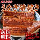 鹿児島産 うなぎ蒲焼 3尾※冷凍【送料無料】※204z06541