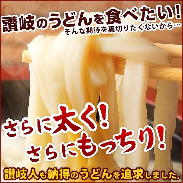 ご当地うどん 麺が本気で旨い 讃岐うどん お試しセット 4人前 送料無料