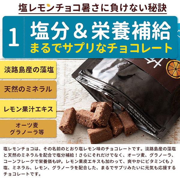 【送料無料】チョコ チョコレート 塩レモンチョコ 100g [ 溶けないチョコレート レモン 塩 塩分補給 耐熱チョコ 塩飴 熱中症 ] スイーツ グルメ