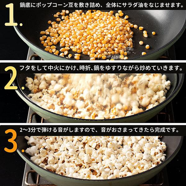 【送料無料】ポップコーン ポップコーン豆 バタフライタイプ 850g  業務量