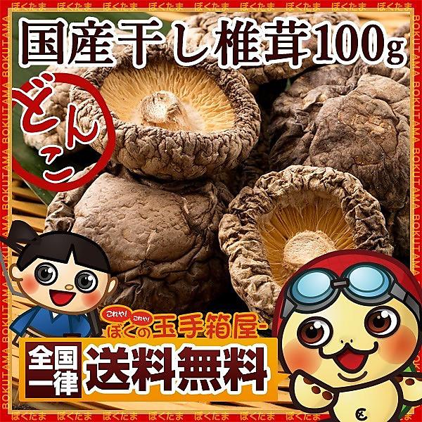 国産 干し椎茸 菌床 どんこ シイタケ 100g 送料無料