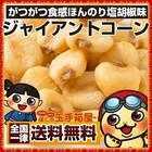 【送料無料】ジャイアントコーン 250g 塩コショウ味 トウモロコシ