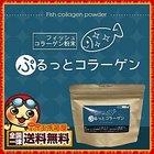 【送料無料】コラーゲン フィッシュコラーゲン 粉末 100g 高純度 コラーゲン 粉末 パウダー ダイエット