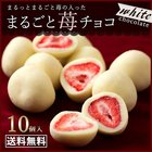 【送料無料】チョコレート 苺 イチゴまるごと チョコレート 10個 いちご トリュフ フリーズドライ 苺 ホワイトチョコ いちご スイーツ