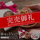 チョコ 送料無料 ルビーチョコレート 想いをのせる宝石箱 「幸せとショコラ」 ミニハート型 20個セット マンディアンチョコ