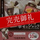 送料無料 ルビーチョコレート 想いをのせる宝石箱 「幸せとショコラ」 ミニスクエア型2個入り×10個セット マンディアンチョコ 内祝い チョコレート