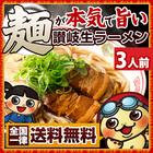 麺が本気で旨い讃岐生ラーメン 3人前 選べるスープ付き お取り寄せ ご当地 送料無料
