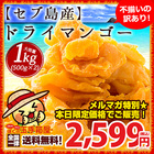 【メルマガ】送料無料 セブ島 ドライマンゴー 1kg (500g×2) [ ドライマンゴー ドライ マンゴー ドライフルーツ 端っこ 訳あり フィリピン 業務用 ]【送料無料】