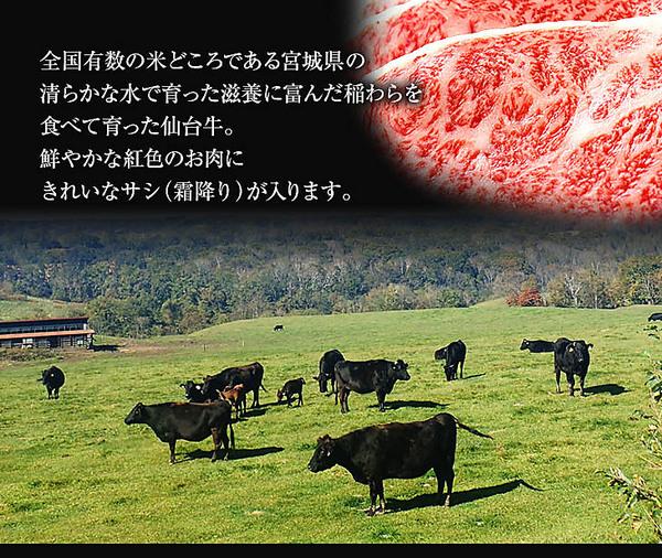 【タイムセール】<1180円引き>「仙台牛」A5ランク切り落とし(300g)