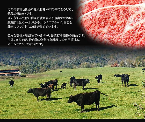 北海道黒毛和牛「ふらの和牛」A4ランク以上 サーロインステーキ(150g×2枚)