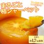 送料無料 冷凍庄内柿 1.7kg /山形県産/庄内柿/柿/フルーツ/レシート