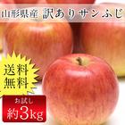 送料無料 山形県産 訳ありサンふじ 約3kg バラ詰め 林檎、りんご、リンゴ、ふじ、フジ 山形 (明細)
