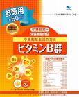 【納期約1~2週間】小林 ビタミンB群 お徳用 120P