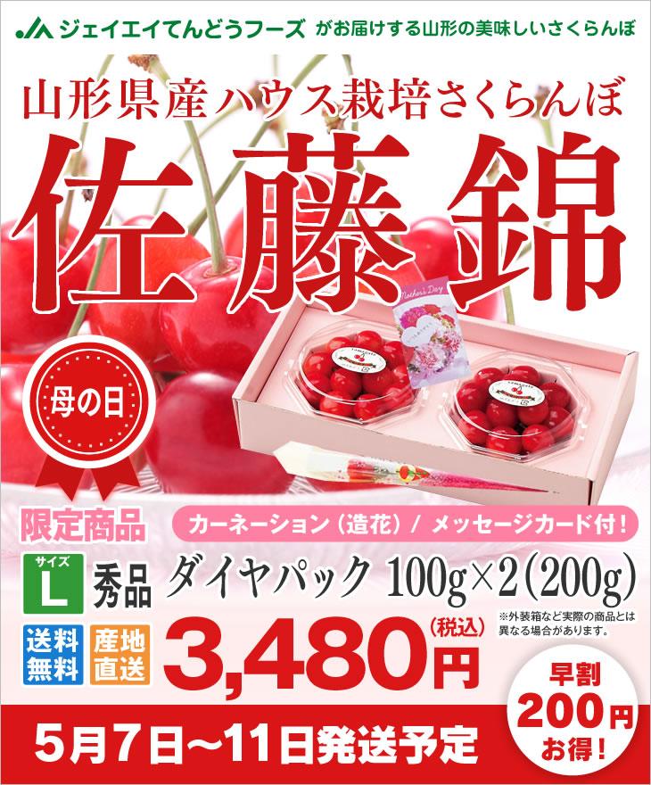 山形県産ハウスさくらんぼ母の日ギフト ダイヤパック100g×2