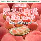 桃 訳あり桃 お買い得桃 山形桃 送料無料桃 品種おまかせ桃 白桃 約2kg f15