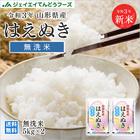 【無洗米】29年米 山形県産はえぬき10kg(5kg×2) 送料無料※一部地域は別途送料