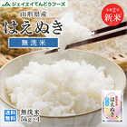 29年産 山形県産はえぬき無洗米5kg 送料無料※一部地域は別途送料追加