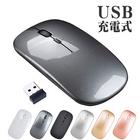 2.4GHz ワイヤレスマウス 受信 小型レシーバー付属 3ボタン シンプルデザイン パソコンマウス Win 10にも対応 ホワイト