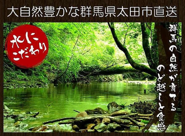【日本全国送料無料!ゆうメール】お試し価格北海道の小麦をブレンドした上州赤城うどんたっぷり約7~8人前 業務用価格にてご用意しました