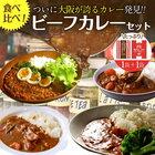 送料無料 大阪ビーフカレー2食セット あまからカレー 野菜カレー こだわりのカレー 災害時の非常食や防災訓練に最適!