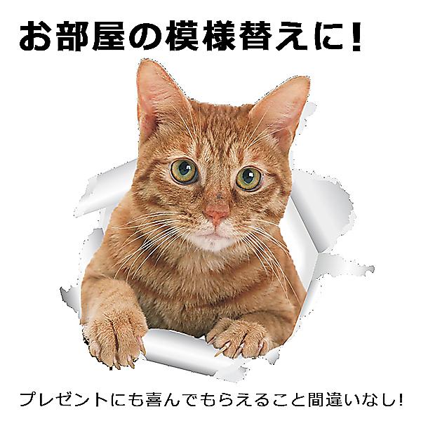 【送料無料】★猫ウォールステッカー5枚セット★ 猫 カワイイ ステッカー シール カワイイ