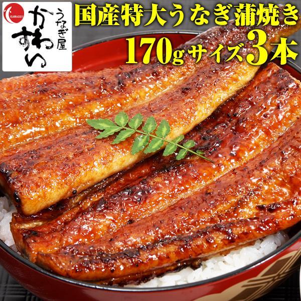 特大170g×3本 国産 うなぎ 蒲焼き 土用丑の日 国産うなぎ蒲焼き 鰻 鰻の蒲焼き 川水