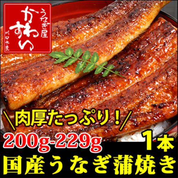 【追加用】 超特大サイズ200g×1本 国産 うなぎ 蒲焼き 送料別