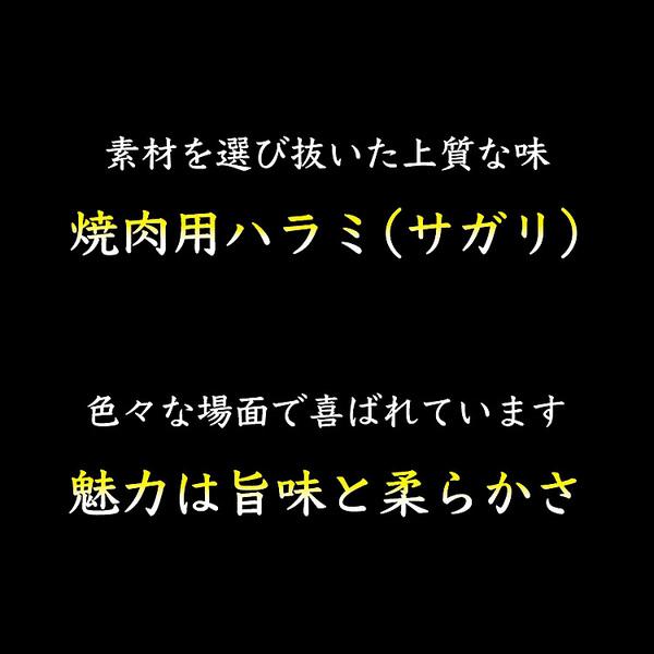 『4時間タイムセール』焼肉用牛ハラミ(サガリ)