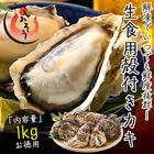 カキ 牡蠣 かき 生食用 殻付き 1kg(10個前後) 冷凍 tentohmaker-alltime-210701-031、tentohmaker-no29-210730-03